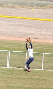 Softball Home Run Save